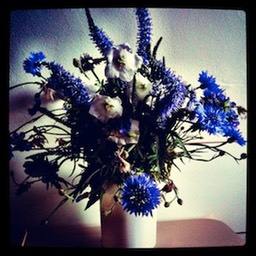 Bleubottle bouquet